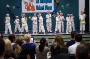 The Karate Ninjas
